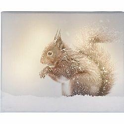 LED Obraz na plátne Animal and snow Squirrel, 20 x 25 cm