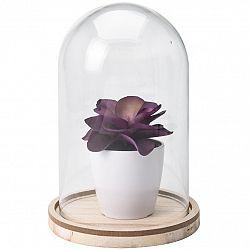 Umelá rastlina v skle Tessa, 19 cm