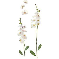 Ozdobné Nálepky Orchidea