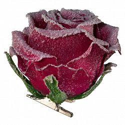 Rose Rose I Bordeaux