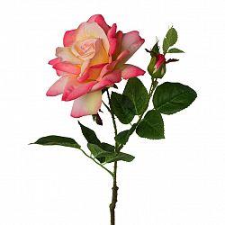 Ruža 3020140ce-10