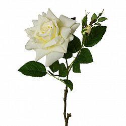 Ruža 3020140ce-48