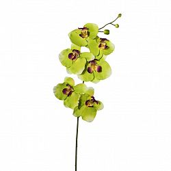 Umelá Kvetina Phalenopsis